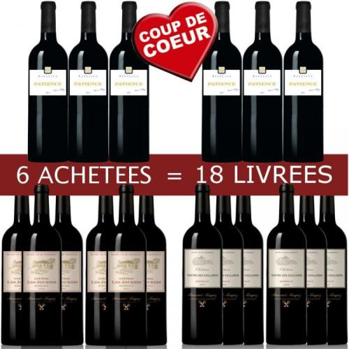 6=18 Pack B.Magrez Bordeaux vin rouge