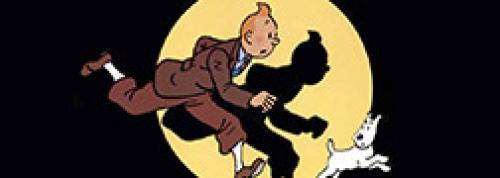 L'intégralité des albums de Tintin originaux