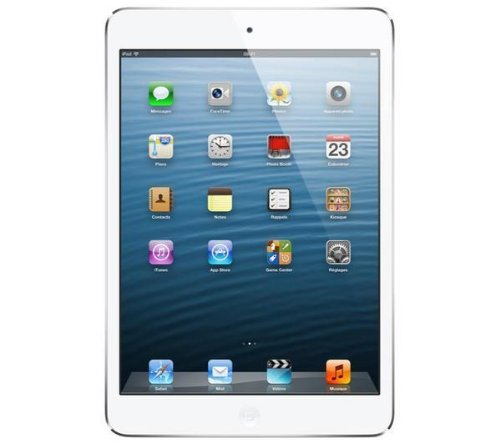 Apple iPad mini tactile 7,9