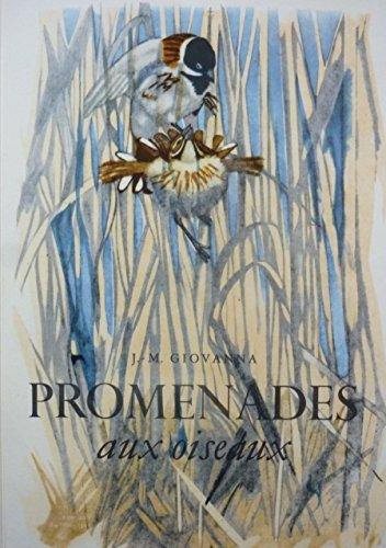 Promenades aux oiseaux. Illustrations de Robert Hainard