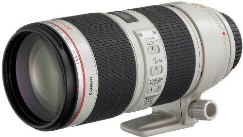 Canon Objectif EF 70-200 mm f/2,8L IS II USM pour Séries EOS